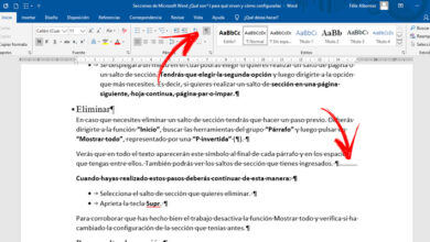 Photo of Microsoft word sections what arehe, what are, for and how to configure them?