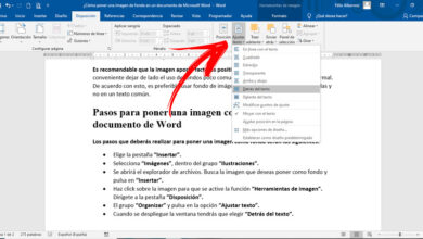 Photo of How to put to background image in microsoft word document? Step by step guide