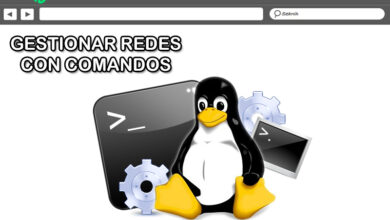 Photo of Linux console what is it, what is it for and what are the most useful commands to use in it?