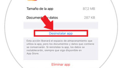 Photo of How to clear instagram cache on iphone and android fast and easy? Step by step guide