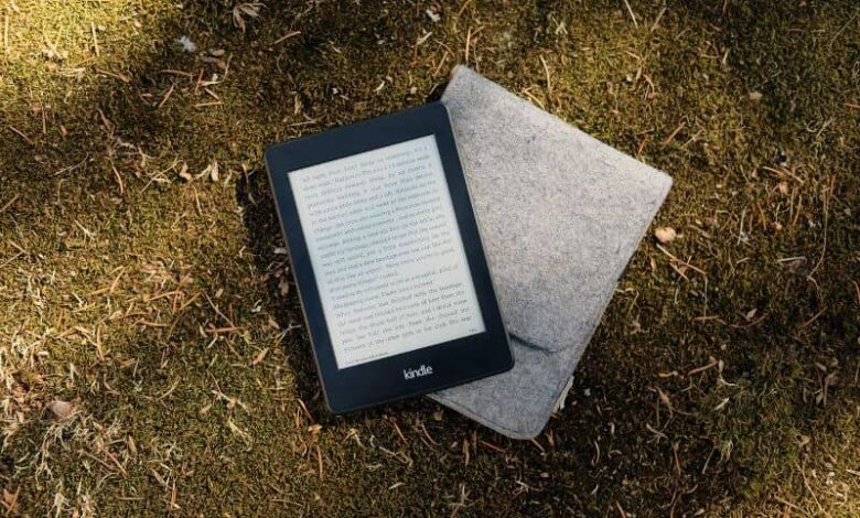 Kindle on the grass