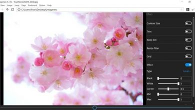 Photo of Forget the windows 10 photo viewer with neeview