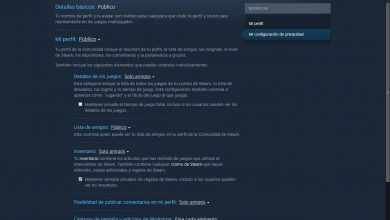 Photo of How to hide your activity on steam to avoid being gossda about