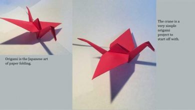 Photo of Origami fan? Create and simulate figures with yourse programs