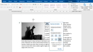 Photo of How to fit an image to text in microsoft word? Step by step guide