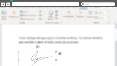 Photo of How to sign documents in microsoft word correctly? Step by step guide