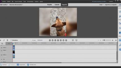 Photo of Adobe premiere elements features that will surprise you