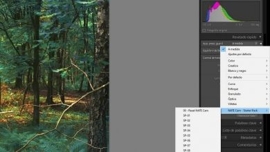 Photo of Improve the quality of your photos with the best presets for lightroom