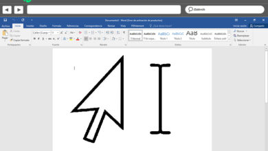 Photo of Microsoft word main window what is it and what is it for?