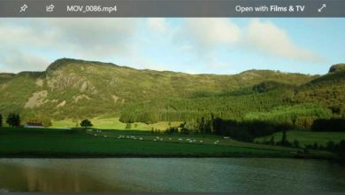 Photo of Do not you like the windows 10 photo viewer? Try these alternatives