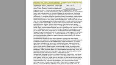 Photo of Sumatra pdf: the best free program to open pdf and read ebooks or comics