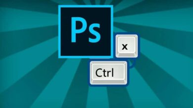 Photo of What are all the keyboard shortcuts or combinations for using Photoshop?