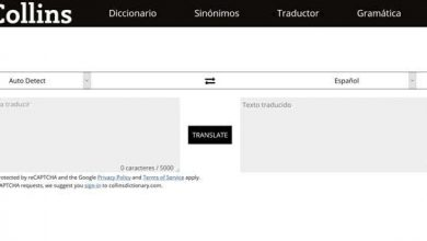 Photo of Translate texts in any language with the best online translators