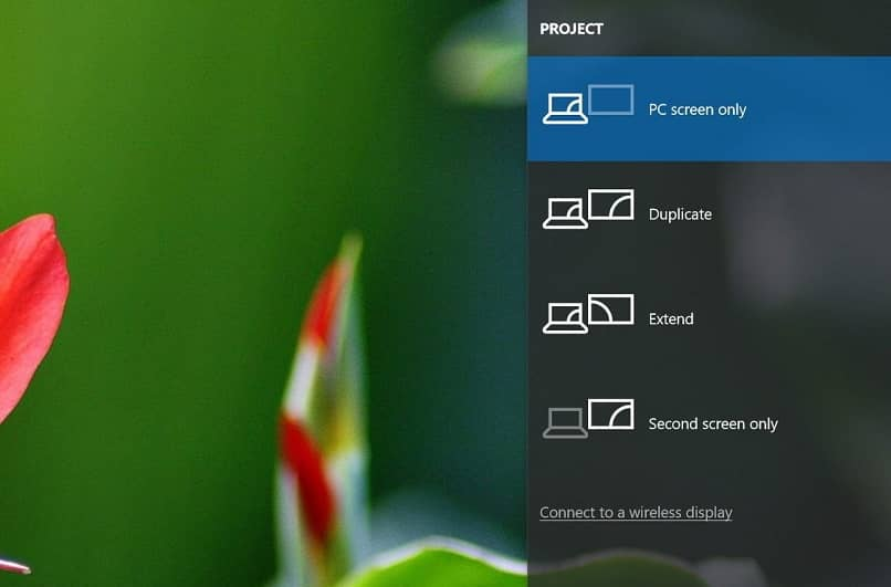 Windows window in Project option