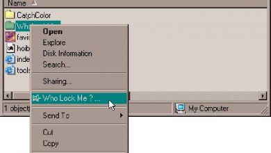 Photo of Locked files? With tha me program you can delete them