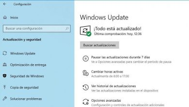 Photo of Microsoft releases new windows 10 20h2 build 19042388