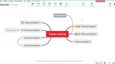 Photo of Learn to organize your ideas in concept maps with xmind