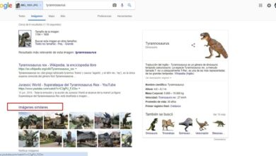 Photo of Google images what is it for what it is for and how is it different from the normal search engine?