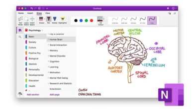Photo of How to create or insert a calendar or calendar template in OneNote