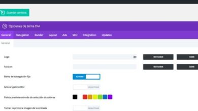 Photo of How to change the background color of each section in Divi – Step by step