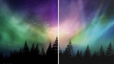 Photo of What is the difference between RGB and CMYK color – Definition and examples