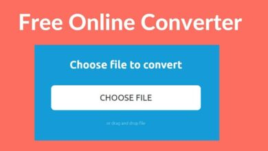 Photo of How to open or convert a file with a PDB extension online