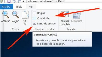 Photo of The best keyboard shortcuts to handle microsoft paint with ease