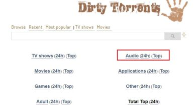 Photo of Torrent paradise what alternatives to search for torrent series and movies are there? List 2021