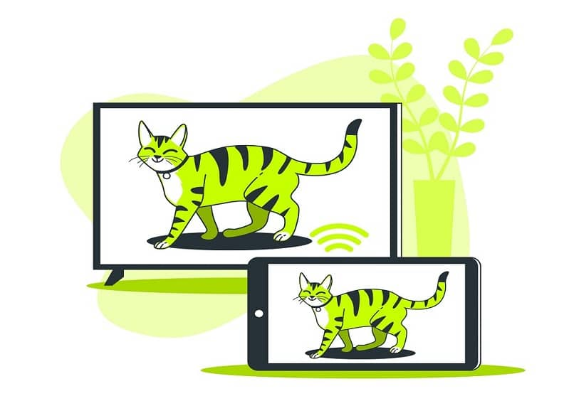 two green cat screens
