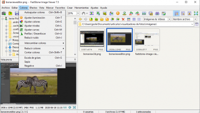 Photo of Ways to open hevc, heic and heif files for free in windows 10