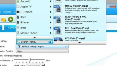 Photo of Download videos from streaming websites with bigasoft video downloader