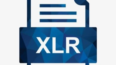 Photo of What is an XLR file and how to open one? Easily