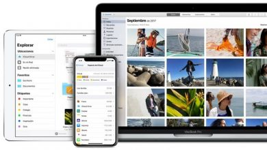 Photo of How to recover mistakenly deleted photos from my iPhone