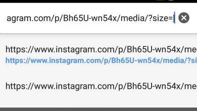 Photo of How to download Instagram images, photos and videos to your cell phone without applications