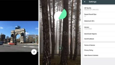 Photo of How to make or create an animated GIF with the Motion Stills App on Android or iPhone