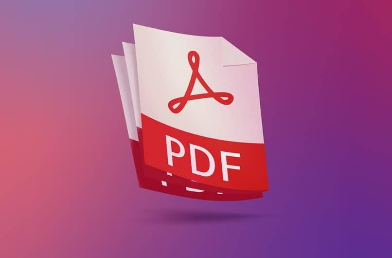 program pdf icon