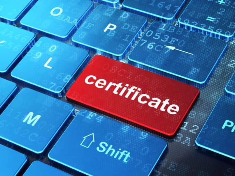 export digital certificate