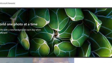 Photo of Change windows wallpaper daily with bingwallpaper