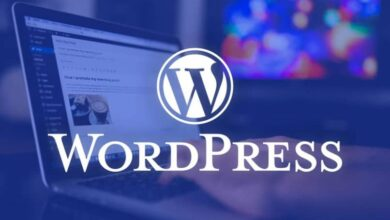 Photo of How to login to WordPress if I can't access wp-admin?