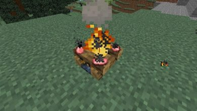 Photo of Bonfire in Minecraft: how to craft it and make a bonfire in it