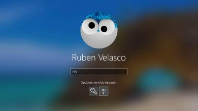 Photo of Windows 10 may 2020 receives its latest build: it is now officially rtm