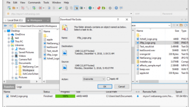 Photo of Manage your servers with the XManager, Xshell and Xftp tools