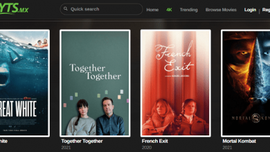Photo of The 20 best websites to download free movies