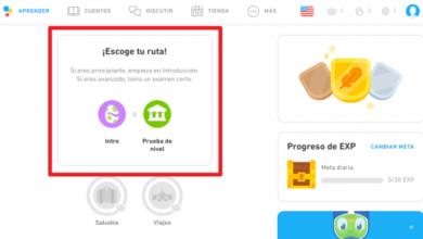 Photo of Duolingo